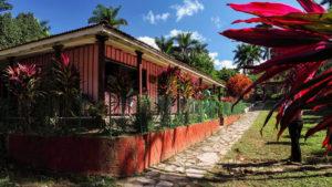 Restaurace v parku Guanayara