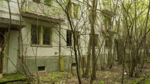 Zarostlé sídliště u anténního systému DuGa