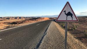 Cesta pouští