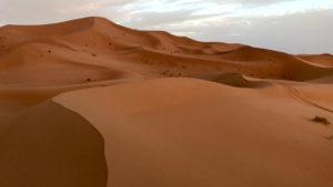 Večerní procházka do dun