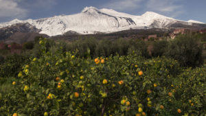 Kontrast nížiny s vrcholem Etny