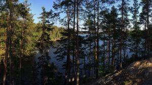 V přírodní rezervaci Repovesi