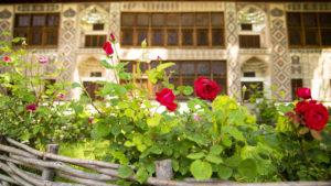 Před palácem rostly takovéto růže, tak jsem si lehl k nohám turistů a pořídil jsem tuto fotografii.